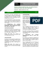 bol_riesgo.pdf