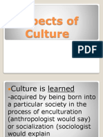 Aspects of Culture.pptx