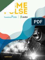 Report Msme Pulse April 2019