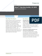 The Forrester Wave™_ Big Data NoSQL, Q1 2019