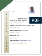 Curriculum-Ing. Marco a. Ruiz