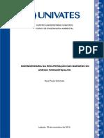 Bioengenharia na recuperação das margens do Arroio Forquetinha.pdf