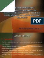 SEGURIDAD INDUSTRIAL REGLAMENTO NACIONAL DE RESPONSABILIDAD CIVIL Y SEGUROS OBLIGATORIOS POR ACCIDENTES DE TRANSITO