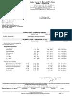 Compte-Rendu PDF_13321046 (3).pdf