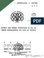 Zacatenco una unidad productora de sal en la ribera noroccidental del lago de Texcoco