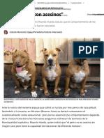 _Los Perros No Son Asesinos