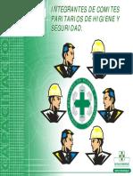 Presentacion - Prev. de Riesgos Para Integrantes Comite Paritario