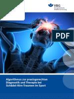 Algorithmus Zur Praxisger. Diagnostik u Therapie Bei Schaedel-Hirn-Traumen Im Sport