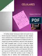 trabajoprcticosobrecelulares-140717105142-phpapp02.ppsx