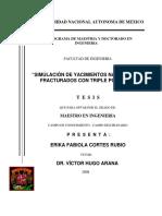 SIMULACIÓN DE YACIMIENTOS NATURALMENTE FRACTURADOS CON TRIPLE POROSIDAD T E S I S ERIKA FABIOLA CORTES RUBIO DR. VÍCTOR HUGO ARANA.pdf