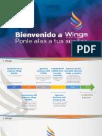 Presentación WINGS MOBILE Colombia Version 3