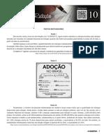 Folheto10_Os_desafios_da_adocao_no_Brasil_prova.pdf