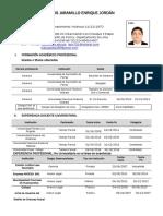 Formato Cv Ucv (1) Dr.ejlj.