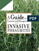 Phragmite Control Management