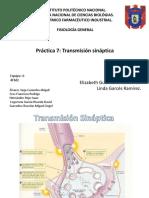 Practica 7 Transmición Sináptica