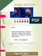 Fisiología Del Dolor