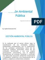 Gestion Ambiental Publica