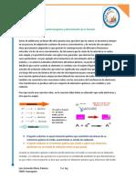 Química III Practica 9 (2)