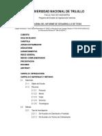 Esquema Del Informe de Desarrollo de Tesis UNT 2019 (Nueva Estructura) - ACTUALIZADO - Copia