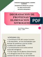 Clase de Recambio Proteico