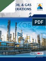Oil Gas 2019 project Brochure.pdf