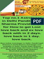 World Famous Astrologer in Delhi (2)