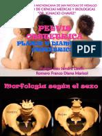 tema-11-pelvis-obstetrica.ppt