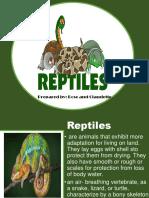 Reptiles 4