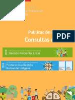 Respuestas Consultas de Bases FPA2018