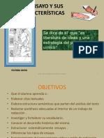 01 Estructuracion Del Ensayo