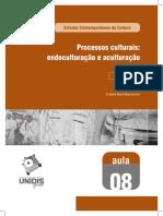 Processos culturais.pdf