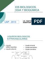 149715315 Liquidos Biologicos Uap