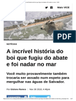 A Incrível História Do Boi Que Fugiu Do Abate e Foi Nadar No Mar - VICE