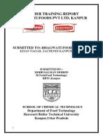 BHAGWATI FOODS TRAINING REPORT 2.docx