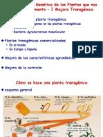 7.- Cómo Se Hace Una Planta Transgénica (1)