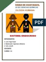 Sistema Endocrino Keyla