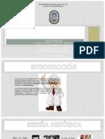 Diapositivas Polimeros Proyecto (2)