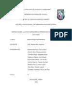 Informe de Fermentacion Alcoholica Del Maiz