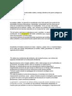 Proyecto de Practica 2019