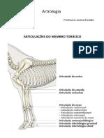 Roteiro Artrologia (Membro Torácico e Pélvico)