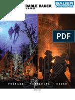 Dive Fire Brochure SP