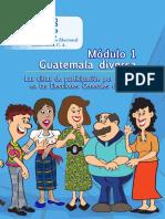 Capacitación Electoral Módulo 01, Guatemala Diversa, TSE Guatemala 2019