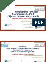 Mg MARTIN LAZZARO_Curso Internacional Promotores de ODS.pdf