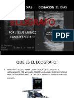 ECOGRAFO.pptx
