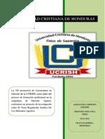 INFORME DE INVESTIGACION AGRARIO.docx