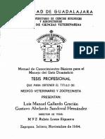 Gallardo Gracian Luis Manuel