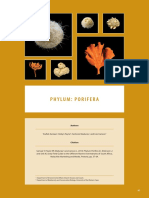 1 Field Guide to SA Offshore Marine Invertebrates_Phylum Porifera.pdf