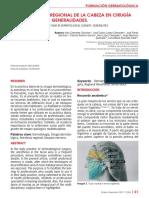 anestesia_en_cirugia.pdf