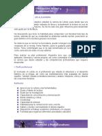 Plan Profesional de Alejandra (Ejemplo)
