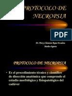 Protocolo de Necropsia.
